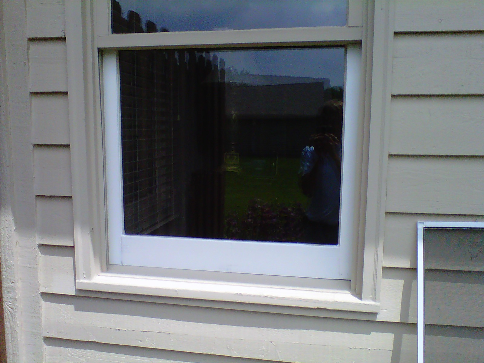 Double Hung Window Sash Replacement Mycoffeepot Org